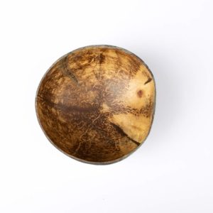 Kokosnussschale 34 web 2